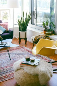 great colors, sheepskin on ottoman