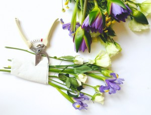how to press flowers botanicals (1)